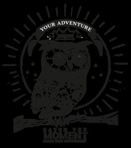 Logo Togi Widget